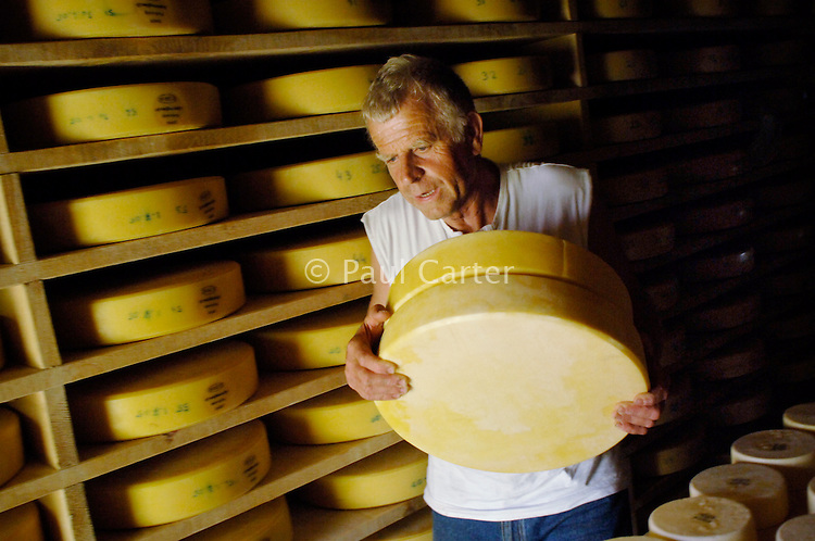 Cowherd and cheesemaker moving some of the Alp cheeses maturing in the cheese house.  They have to be turned daily.   He spends 100 days in the summer, high up in the mountains, tending cows and pigs and making cheese at Balisalp and Käserstatt near Meiringen, Switzerland.