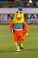 The San Diego Chicken, also known as the Famous Chicken or just The Chicken, during the Fall Stars game at Surprise Stadium on November 3, 2018 in Surprise, Arizona. The AFL West defeated the AFL East 7-6 . (Zachary Lucy/Four Seam Images)