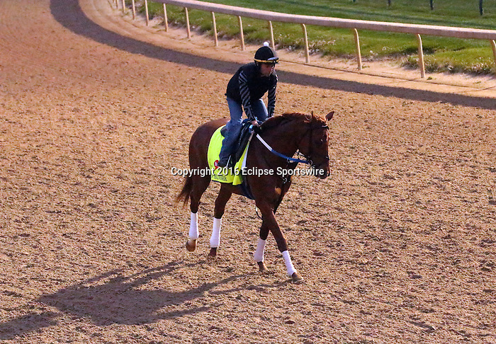 LOUISVILLE, KY - APRIL 20: Gun Runner (Candy Ride x Quiet Giant, by Giant's Causeway) exercises at Churchill Downs, Louisville KY. Owner Winchell Thoroughbreds LLC and Three Chimneys Farm, trainer Steven M. Asmussen. (Photo by Mary M. Meek/Eclipse Sportswire/Getty Images)