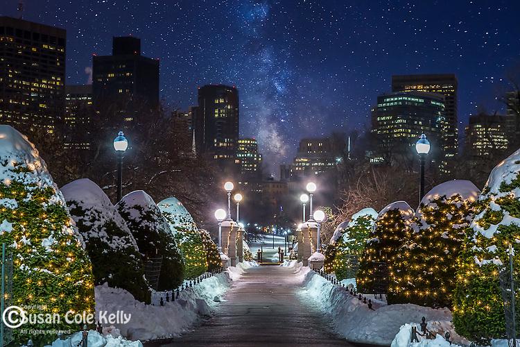 A starry sky rises above the Public Garden, Boston, Massachusetts, USA