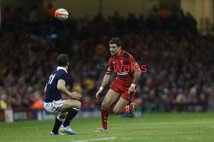 Wales scrum half Mike Phillips chips the ball over Scotland  wing Max Evans.<br /> RBS 6 Nations 2014<br /> Wales v Scotland<br /> Millennium Stadium<br /> <br /> 15.03.14<br /> <br /> ©Steve Pope-SPORTINGWALES