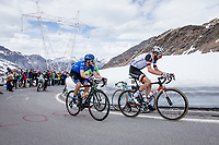 Laurens ten Dam (NED/Sunweb) up the Passo dello Stelvio (alt: 2758m)<br /> <br /> Stage 16: Rovett › Bormio (222km)<br /> 100th Giro d'Italia 2017