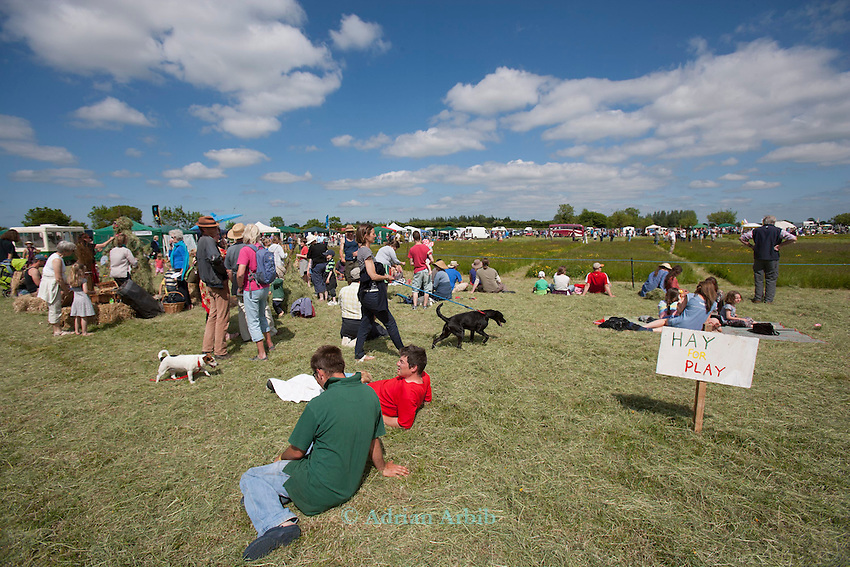 The  2013  Scythe Festival ,Thorney Lakes, Muchelney, Nr Langport, Somerset