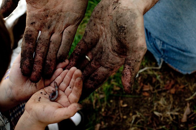 My husband and older son, then almost four, examine a worm as they plant flowers together in our yard.