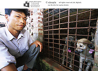 A dog farm in Vietnam. Dogs meat is considered a delicacy in Vietnam with increasing numbers being illegally stolen and shipped across the border from Thailand.