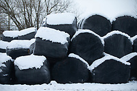 26-1-2021 Bales of wrapped silage covered in snow <br /> ©Tim Scrivener Photographer 07850 303986<br />      ....Covering Agriculture In The UK....