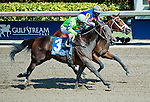 HALLANDALE BEACH, FL - JAN 28: Imperative #3, ridden by Antonio Gallardo, wins the Poseidon Handicap on the last jump beating Stanford #4, ridden by John Velazquez during Pegasus World Cup Invitational Day at Gulfstream Park Race Course on January 28, 2017 in Hallandale Beach, Florida. (Photo by Scott Serio/Eclipse Sportswire/Getty Images)