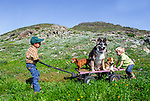 Jake and Denim taking the dogs for a wagon ride. At the ranch in San Luis Obispo, California
