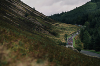 coming down Whinlatter Pass<br /> <br /> Racing in/around Lake District National Parc / Cumbria<br /> <br /> Stage 6: Barrow-in-Furness to Whinlatter Pass   (168km)<br /> 15th Ovo Energy Tour of Britain 2018