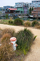 An orange and white fire hydrant in Mission Creek Park with the creek, houseboats and apartments behind.