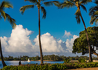 A woman shaded by a palm tree watches a sailboat at Hale'iwa Ali'i Beach Park, North Shore, O'ahu.