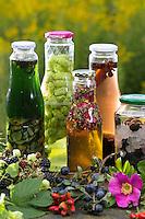 Heilschnaps, Heilschnäpse, Kräuterschnaps, Kräuterschnäpse, Likör, Liköre, Kräuterlikör, Magenbitter, Wildfruchtschnaps, Fruchtschnaps, Früchte, Wildfrüchte einlegen, angesetzt. bitters, schnapps, liquor, cordial. Walnuß-Schnaps, Walnuss-Schnaps, Hopfen-Weißwein, Hopfenwein, Blütenessig, Essig, Schlehenlikör, Schlehen-Likör. Hopfen, Humulus lupulus, Common Hop. Walnuss, Walnuß, Wal-Nuss, Wal-Nuß, Juglans regia, Walnut. Schlehe, Schwarzdorn, Prunus spinosa, Blackthorn, Sloe.