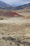 Oregon, Eastern Oregon, John Day Fossil Beds National Monument, Painted Hills Unit, meadowlark,