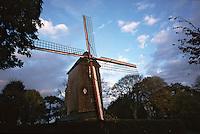 Europe/France/Nord Pas-de-Calais/59/Nord/Cassel: le moulin à vent