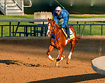 April 27, 2021: King Fury exercises in preparation for the Kentucky Derby at Churchill Downs on April 27, 2021 in Louisville, Kentucky. Scott Serio/Eclipse Sportswire/CSM
