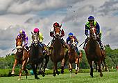 4th NY Stallion Stakes - Fresco