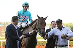 September 28, 2014: Lady Eli with Irad Ortiz, r. win the Grade III Miss Grillo Stakes for 2-year old fillies, going 1 1/16 mile on the turf, at Belmont Park. Trainer: Chad C. Brown. Owner:  Sheep Pond Partners. Sue Kawczynski/ESW/CSM