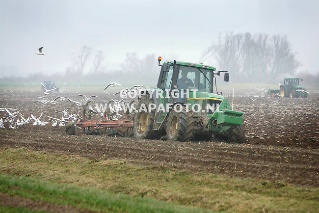 Herwen, 301106<br /> Akkerbouwer Harrie Fierkens zaait wintertarwe in 18 HA grond. Naast hem wordt eerst de grond geploegd<br /> Foto: Sjef Prins - APA Foto