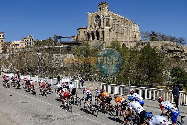 The peloton during Stage 3 of the 100th edition of the Volta Ciclista a Catalunya 2021, running 203.1km from Canal Olimpic de Catalunya to Vallter 2000, Spain. 24th March 2021.   <br /> Picture: Bora-Hansgrohe/Luis Angel Gomez/BettiniPhoto | Cyclefile<br /> <br /> All photos usage must carry mandatory copyright credit (© Cyclefile | Bora-Hansgrohe/Luis Angel Gomez/BettiniPhoto)
