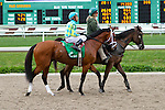 February 21, 2015: Pyrite Mountain with Rafael Bejarano up in the Fairgrounds Handicap at the New Orleans Fairgrounds Risen Star Stakes Day. Steve Dalmado/ESW/CSM