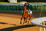 April 26, 2021: Concert Tour exercises in preparation for the Kentucky Derby at Churchill Downs on April 26, 2021 in Louisville, Kentucky. Scott Serio/Eclipse Sportswire/CSM