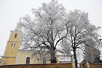Church and tree in the frost, Köszegszerdahely, Hungary