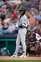 Vermont Lake Monsters left fielder James Terrell (21) at bat in front of catcher Oscar Campos (2) during a game against the Tri-City ValleyCats on June 16, 2018 at Joseph L. Bruno Stadium in Troy, New York.  Vermont defeated Tri-City 6-2.  (Mike Janes/Four Seam Images)
