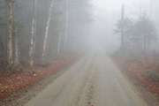 Long Pond Road (old North and South Road) in Benton, New Hampshire USA on a rainy and foggy autumn day.