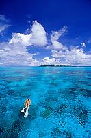 snorkeler over coral reef, Palau, Belau, Pacific Ocean