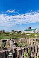Farm Institute, Edgartown, Martha's Vineyard,