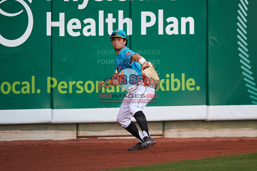 Lansing Lugnuts left fielder Dominic Abbadessa (1) during a Midwest League game against the Beloit Snappers at Cooley Law School Stadium on May 4, 2019 in Lansing, Michigan. The Lugnuts wore their Copa de la Diversión jerseys, becoming the Lansing Locos for the evening. Beloit defeated Lansing 2-1. (Zachary Lucy/Four Seam Images)