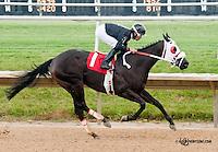 Avie winning at Delaware Park on 7/13/13