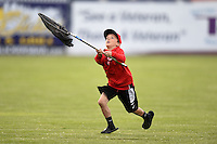Batavia Muckdogs young fan attempts to catch a chicken in a fishing net during an on field promotion during a game against the Mahoning Valley Scrappers on June 20, 2014 at Dwyer Stadium in Batavia, New York.  Batavia defeated Mahoning Valley 7-4.  (Mike Janes/Four Seam Images)
