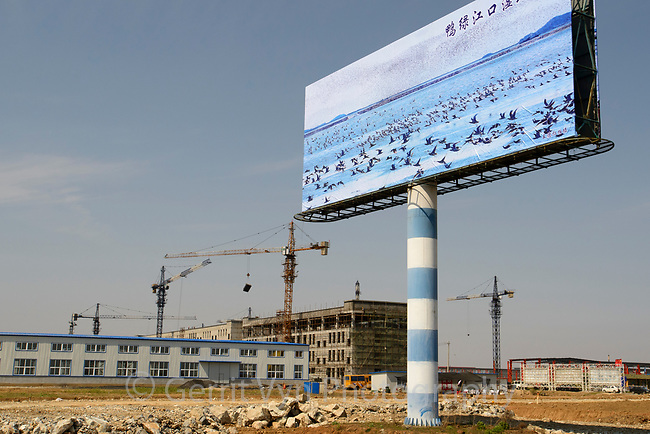 Development in the Dongang area that was once intertidal wetland. Yalu Jiang, China. April.