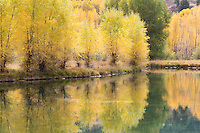 I came across this pond on the highway north of Lake City, Colorado.  The perfectly still morning yielded great reflections.