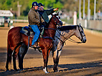 LOUISVILLE, KY - APRIL 30: Trainers D. Wayne Lukas and Bill Mott watch their horses train for the Kentucky Derby during morning workouts at Churchill Downs on April 30, 2018 in Louisville, Kentucky. (Photo by Scott Serio/Eclipse Sportswire/Getty Images)