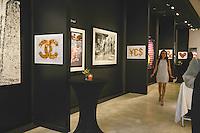 "Mouche Gallery Presents the Opening of Artist Clara Hallencreutz's Exhibit ""Picture Global Warming"""