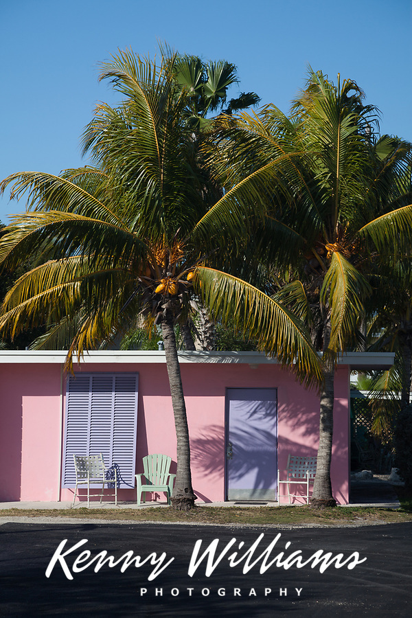 Pink Tropical Style House with  Purple Door and Window Shutters and Two Coconut Palm Trees Growing in Front, Florida Keys, FL, America, USA.