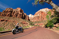 4415 / Zion Nationalpark: AMERIKA, VEREINIGTE STAATEN VON AMERIKA, UTAH,  (AMERICA, UNITED STATES OF AMERICA), 24.05.2006:mit der Harley Davidson durch den Zion Nationalpark, Canyon Overlook, Zion Mt. Carmel Highway. Der Zion-Nationalpark befindet sich im Suedwesten Utahs an der Grenze zu Arizona. Er hat eine Flaeche von 593 km² und liegt zwischen 1128 m (Coalpits Wash) und 2660 m Hoehe (Horse Ranch Mountain). 1909 wurde das Gebiet des Canyons zum Mukuntuweap National Monument ernannt, seit 1919 besitzt er den Status eines Nationalparks. Der Park wurde 1937 um den Kolob Canyon erweitert. Zion ist ein altes hebraeisches Wort und bedeutet soviel wie Zufluchtsort oder Heiligtum, welches oft von den mormonischen Siedlern in Utah benutzt wurde. Innerhalb des Parks befindet sich eine schluchtenreiche Landschaft mit zahlreichen Canyons, von denen der Zion Canyon und der Kolob Canyon die bekanntesten sind. Die Canyons sind aus 170 Millionen Jahre altem braunen bis orangeroten Sandstein der Navajo-Formation entstanden. Der Park liegt an der Grenze zwischen dem Colorado-Plateau, dem Great Basin und der Mojave-Wueste. Durch seine besondere geografische Lage existieren im Park eine Vielzahl an unterschiedlichen Lebensraeumen mit vielen verschiedenen Pflanzen und Tieren...