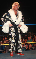 Ric Flair 1994<br /> Photo By John Barrett/PHOTOlink