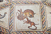 Hunting scene with a hare and dog from the 3rd century Roman mosaic villa floor from Lod, near Tel Aviv, Israel. The Roman floor mosaic of Lod is the largest and best preserved mosaic floor from the levant region along the eastern Mediterranean coast. It is unclear whether the owners were Jewish, Christian or pagan but either way they would have been wealthy to own such a magnificent floor. The Shelby White and Leon Levy Lod Mosaic Centre, Lod, Israel.