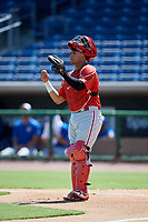 Philadelphia Phillies catcher Rafael Marchan (6) during a Florida Instructional League game against the Toronto Blue Jays on September 24, 2018 at Spectrum Field in Clearwater, Florida.  (Mike Janes/Four Seam Images)
