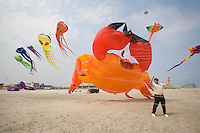 Wildwood International Kite Festival, Wildwood, New Jersey