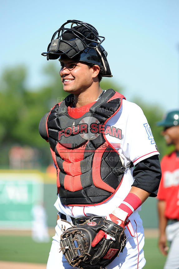 Great Lakes Loons catcher Jose Capellan (6) during a game against the Fort Wayne TinCaps on August 18, 2013 at Dow Diamond in Midland, Michigan.  Fort Wayne defeated Great Lakes 4-3.  (Mike Janes/Four Seam Images)