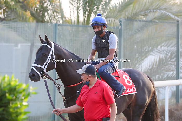 March 25, 2021: Dubai World Cup contender Title Ready trains on the track for trainer Dallas Stewart at Meydan Racecourse, Dubai, UAE. Shamela Hanley/Eclipse Sportswire/CSM