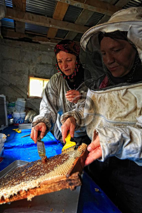 In the honey house set up a few metres from the apiary, extraction is carried out by hand. The hives are harvested two by two in a half-day of work. The women's goal is to sell the honey directly from their shop in the tourist village of Ayder.///Dans la miellerie aménagée à quelques mètres du rucher, l'extraction se fait à la main. Les ruches sont récoltées deux par deux en a demi-journée de travail. Le but pour ces femmes est de vendre directement le miel au village touristique de Ayder ou elles possèdent a boutique.