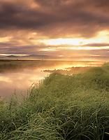 Fog and sunrise on Klamath Marsh. Oregon.