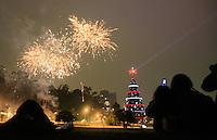 SAO PAULO, SP, 04 DE DEZEMBRO DE 2011 - INAUGURAÇÃO DA ARVORE DE NATALA NO PARQUE DO IBIRAPUERA - Milhares de pessoas se reunem nesta noite de domingo (04) para inauguração da tradicional arvore de natal do Parque do ibirapuera em São Paulo. (FOTOS: AMAURI NEHN/NEWS FREE)