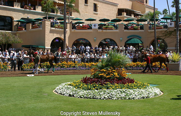 Grooms parade thoroughbreds around the paddock at Del Mar Racetrack in Del Mar, California before a race.