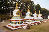 India, Dehradun.   Four Stupas on Grounds of the Buddhist Temple of Dehradun and Mindrolling Monastery.